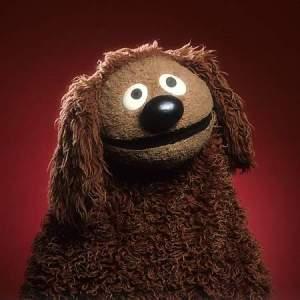 simon muppet
